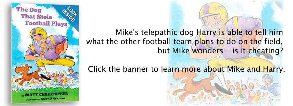 dog-stole-football